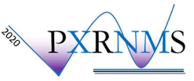 Конференция PXRNMS